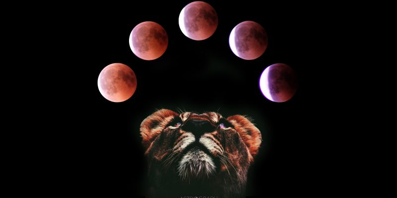 Shift Your Life with Total Lunar Eclipse in Leo 2019